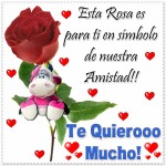 Fotos bonitas de rosas