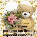 Imagenes de oso con flores bonitas