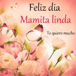 Feliz dia de la madre frases bonitas
