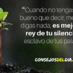 Palabras y Frases de reflexion