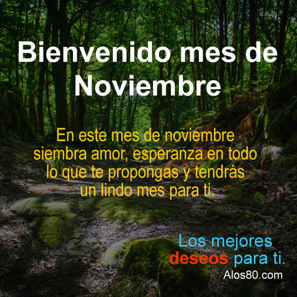 mes de noviembre
