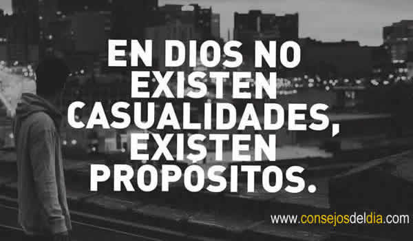 propositos frases