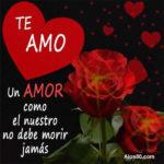 Frases: Un amor como el nuestro