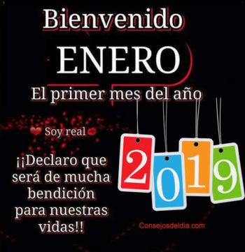 bienvenido enero