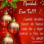 Frases: Feliz Navidad y Felices Fiestas