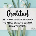 Imagenes bonitas con Letras de Gratitud