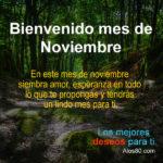Frases de Bienvenido mes de Noviembre