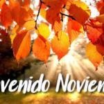 Feliz mes de Noviembre con imagenes bonitas