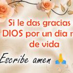 Frases Feliz Domingo con imagenes bonitas